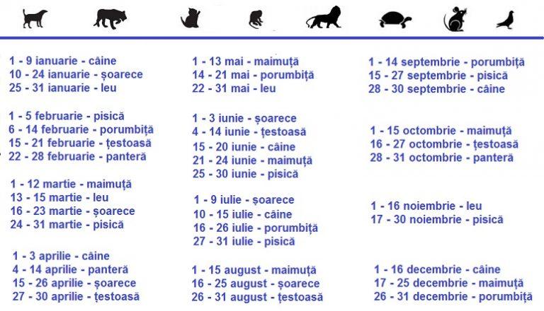 animalul-zilei-de-nastere-768x440